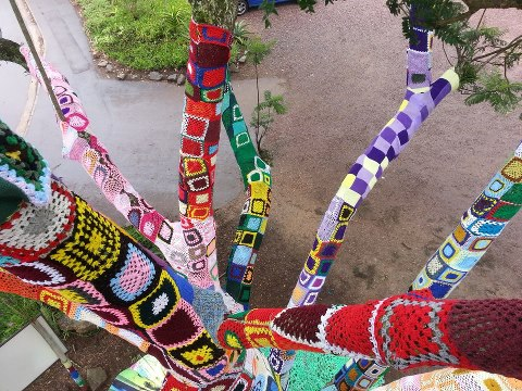 Hillcrest aids centre yarnbomb tree