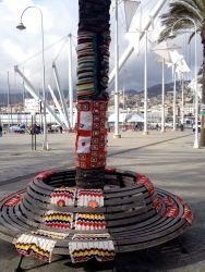 Yarnbomb bench and tree Genoa