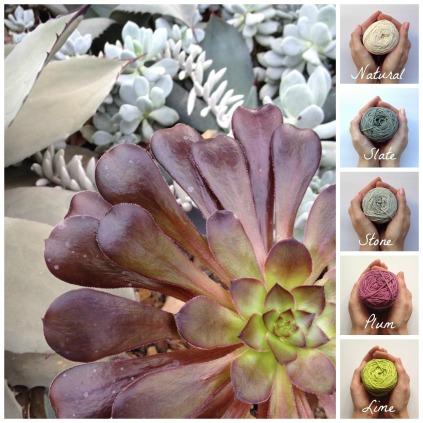 Vinnis colour palette cactus