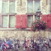 Delft bicycles